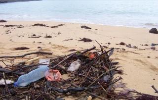 déchets plastique sur la plage