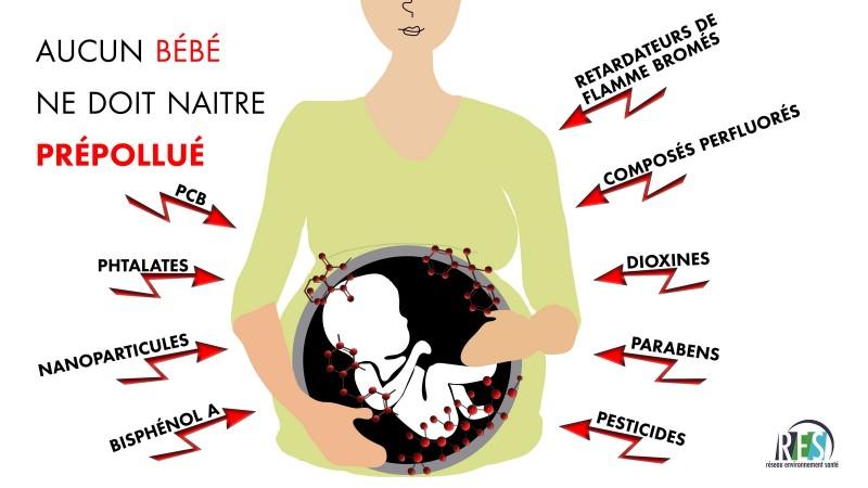 Conférence de presse «Aucun bébé ne doit naître pré pollué»