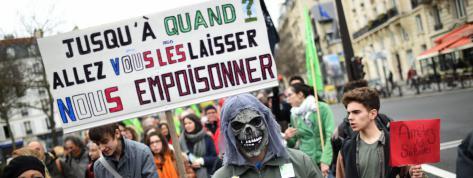 Perturbateurs endocriniens : à la France de montrer l'exemple ?