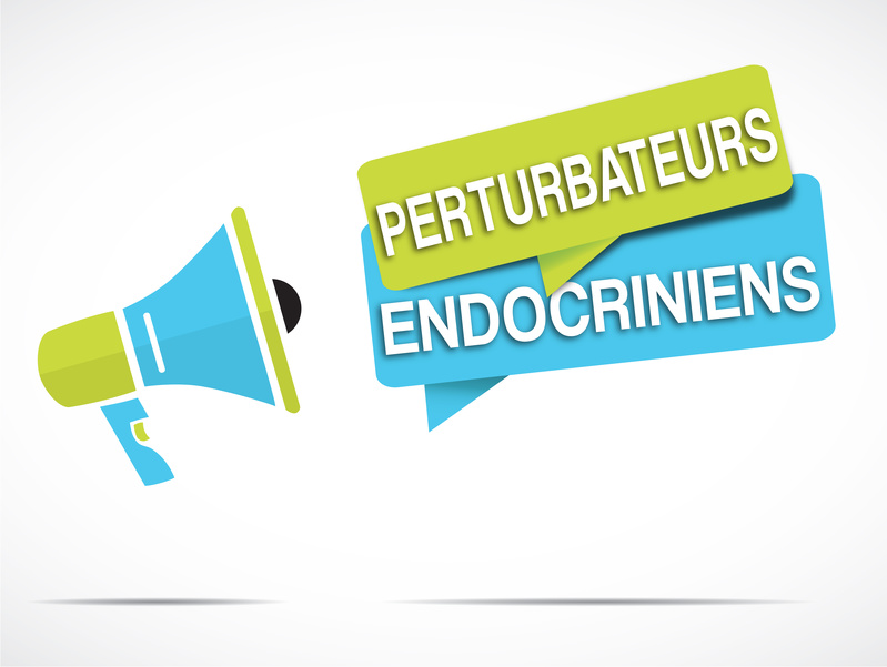Exposition prénatale aux perturbateurs endocriniens et troubles du comportement chez les garçons entre 3 et 5 ans