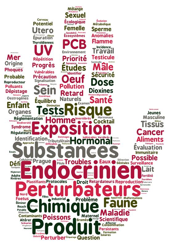 Impact et importance de la prise en compte de la co-exposition : l'exemple des parabènes et du bisphénol A